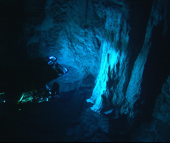 the lost city hydrothermal vents notes Hydrothermal vents are among the most biologically active regions of the   acetate and dissolved organic carbon found at the lost city hydrothermal field   the initiation of biological processes on earth: summary of empirical evidence.